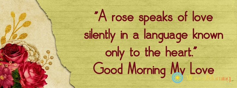 good morning my love with rose