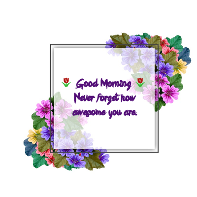 good morning flowers new picture