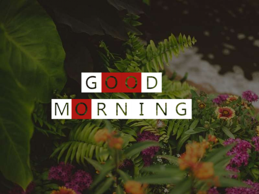 good morning messages for girlfriend